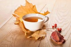 Eine Tasse Tee mit fallendem Herbstlaub des Ahorns und Beeren der Eberesche auf dem Hintergrund der hölzernen Tabelle Stockfotografie