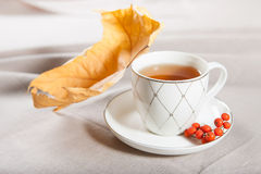 Eine Tasse Tee mit fallendem Herbstlaub des Ahorns und ein Bündel der Eberesche Lizenzfreies Stockfoto