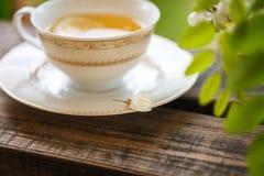Eine Tasse Tee und eine Untertasse auf Veranda Stockfotos