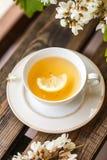 Eine Tasse Tee und eine Untertasse auf Veranda Lizenzfreie Stockfotos
