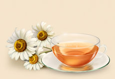 Eine Tasse Tee und Gänseblümchen Lizenzfreie Stockfotografie