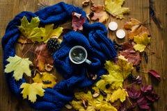 Eine Tasse Tee und Granatapfel Lizenzfreie Stockfotos