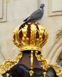 Eine Taube wirft triumphierend auf einem vergoldeten Beitrag in der französischen Stadt von Nancy auf Stockfotos