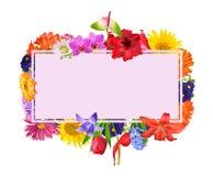 Eine Textkarte gestaltet mit bunten Frühlingsblumen stockfotografie