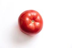 Eine Tomate Lizenzfreie Stockfotos