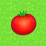 Eine Tomate auf Farbhintergrund Auch im corel abgehobenen Betrag Lizenzfreie Stockbilder