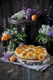 Eine Torte mit frischen Aprikosen stockfotografie