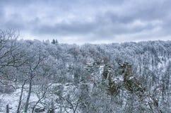 Eine träumerische Ansicht des Schnee bedeckten Waldes lizenzfreies stockbild