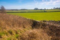 Eine Trockenmauer im See-Bezirks-Nationalpark, England Stockfotos