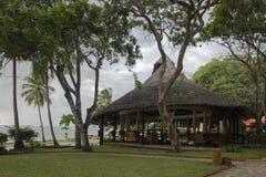 Eine tropische Stange Lizenzfreies Stockfoto