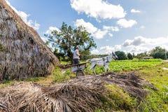 Eine typische Ansicht in Vinales Kuba stockfotografie