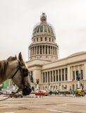 Eine typische Ansicht in zentrales Havana in Kuba lizenzfreie stockfotografie