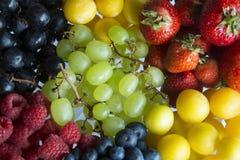 Eine Umhüllung von frischen Sommer-Früchten Lizenzfreies Stockfoto