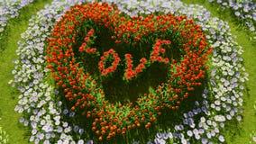 Eine Vielzahl von Blumen in Form eines Herzens auf einem grünen Feld, als Symbol Valentinsgruß ` s von Tag und von Liebe Stockbild