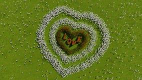 Eine Vielzahl von Blumen in Form eines Herzens auf einem grünen Feld, als Symbol Valentinsgruß ` s von Tag und von Liebe Stockfotografie