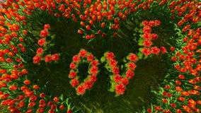 Eine Vielzahl von Blumen in Form eines Herzens mit der Wortliebe Lizenzfreie Stockfotografie