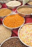 Eine Vielzahl von Nüssen in der Glasur: Erdnüsse, Haselnüsse, Kastanien, Walnüsse, Pistazie und Pekannüsse Stockbilder