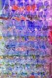 Eine Vielzahl von Süßwasser-Aquarium-Fischen verkaufte in der transparenten Plastiktasche stockbild