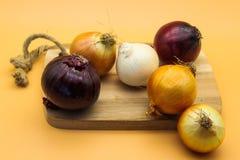Eine Vielzahl von Zwiebeln auf orange Hintergrund stockfotos