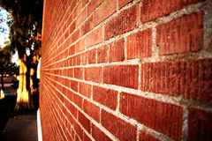 Eine Wand Stockfotos