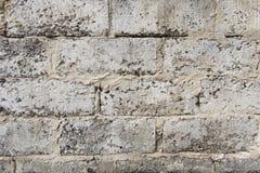 Eine Wand hergestellt von den grauen Ziegelsteinen stockfotografie