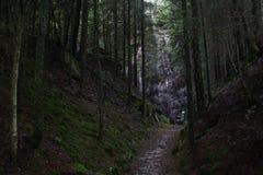 Eine Wasserquelle in der Hallands Provinz Lizenzfreie Stockfotos