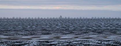 Eine weiße Landschaft eines Geländes, das im Schnee bedeckt wird Stockbilder