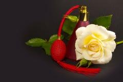 Eine weiße Rose, ein Spray des Rotes und Roseblätter stockfotos