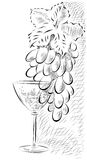 Eine Weintraube und ein Glas Wein Lizenzfreies Stockbild