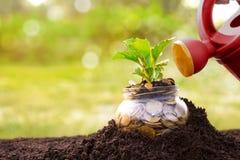 Eine Weise, Geld zu sparen lizenzfreies stockbild