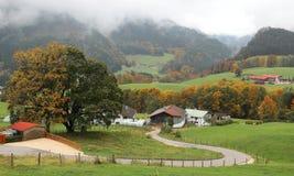 Eine Wicklungslandstraße kurvt zwischen grüne Felder und die Herbstbäume, die zu ein Bauernhaus auf einem schönen Abhang führen stockfotografie