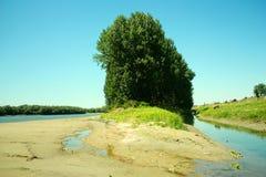 Eine Wiese auf der Donau Lizenzfreie Stockfotos