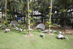 Eine Wiese mit Höckerschwänen und Gras und Bäume und Steine im tropischen botanischen Garten Nong Nooch nahe Pattaya-Stadt in Tha Lizenzfreies Stockfoto