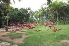 Eine Wiese mit rosa Flamingo und Gras und Bäume und Steine im tropischen botanischen Garten Nong Nooch nahe Pattaya-Stadt in Thai Lizenzfreies Stockbild