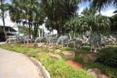 Eine Wiese mit Zebras und Gras und Bäume und Steine im tropischen botanischen Garten Nong Nooch nahe Pattaya-Stadt in Thailand Lizenzfreie Stockfotografie