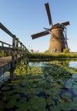 Eine Windmühle auf der Bank eines Kanals mit Schilfen in Kinderdijk Holland, die Niederlande stockbild