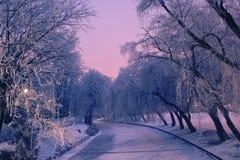 Eine Winterszene Stockbilder