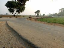 Eine Zickzack-Straße neben den landwirtschaftlichen Kulturen lizenzfreies stockfoto