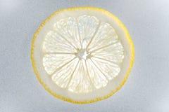 Eine Zitronenscheibe Stockfotos