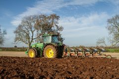Eine Zuckerrübenernte laufend - Traktor und Anhänger entladen Zuckerrüben Stockfotografie