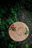 In einem grünen Garten auf einem Teller, Apfel Charlotte lizenzfreies stockbild
