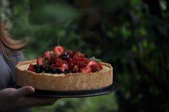 In einem grünen Garten in der Naturfruchttorte mit Erdbeeren und anderen Beeren stockfoto