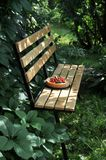 In einem grünen Garten in der Naturfruchttorte mit Erdbeeren und anderen Beeren lizenzfreies stockfoto
