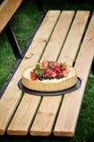 In einem grünen Garten in der Naturfruchttorte mit Erdbeeren und anderen Beeren stockfotografie