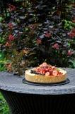In einem grünen Garten in der Naturfruchttorte mit Erdbeeren und anderen Beeren lizenzfreie stockbilder