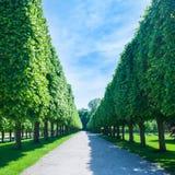 An einem parc - still Lizenzfreies Stockbild