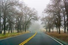An einem Tag mit dichtem Nebel und niedriger Sicht fahren, Kalifornien stockbilder