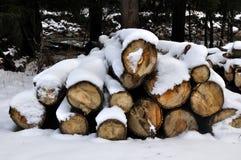 In einem Winterwettbewerb viel Stück Holz umfasst mit Schnee Stockbild