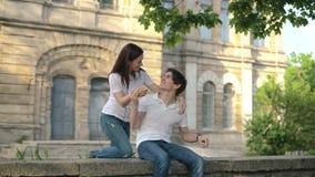 Einen Kerl und ein Mädchen treffen, ein Paar im Park, wenn ein Kerl ein Notizbuch liest stock footage