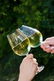 Toast mit weißem Wein Lizenzfreies Stockbild